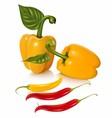 Set of chilli fruit stock vector