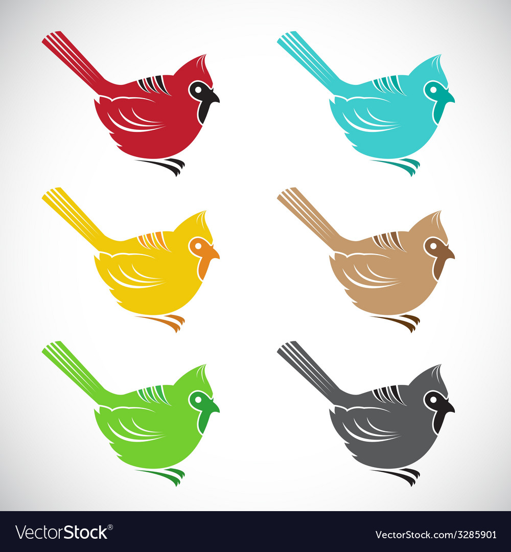 Bird angry vector | Price: 1 Credit (USD $1)
