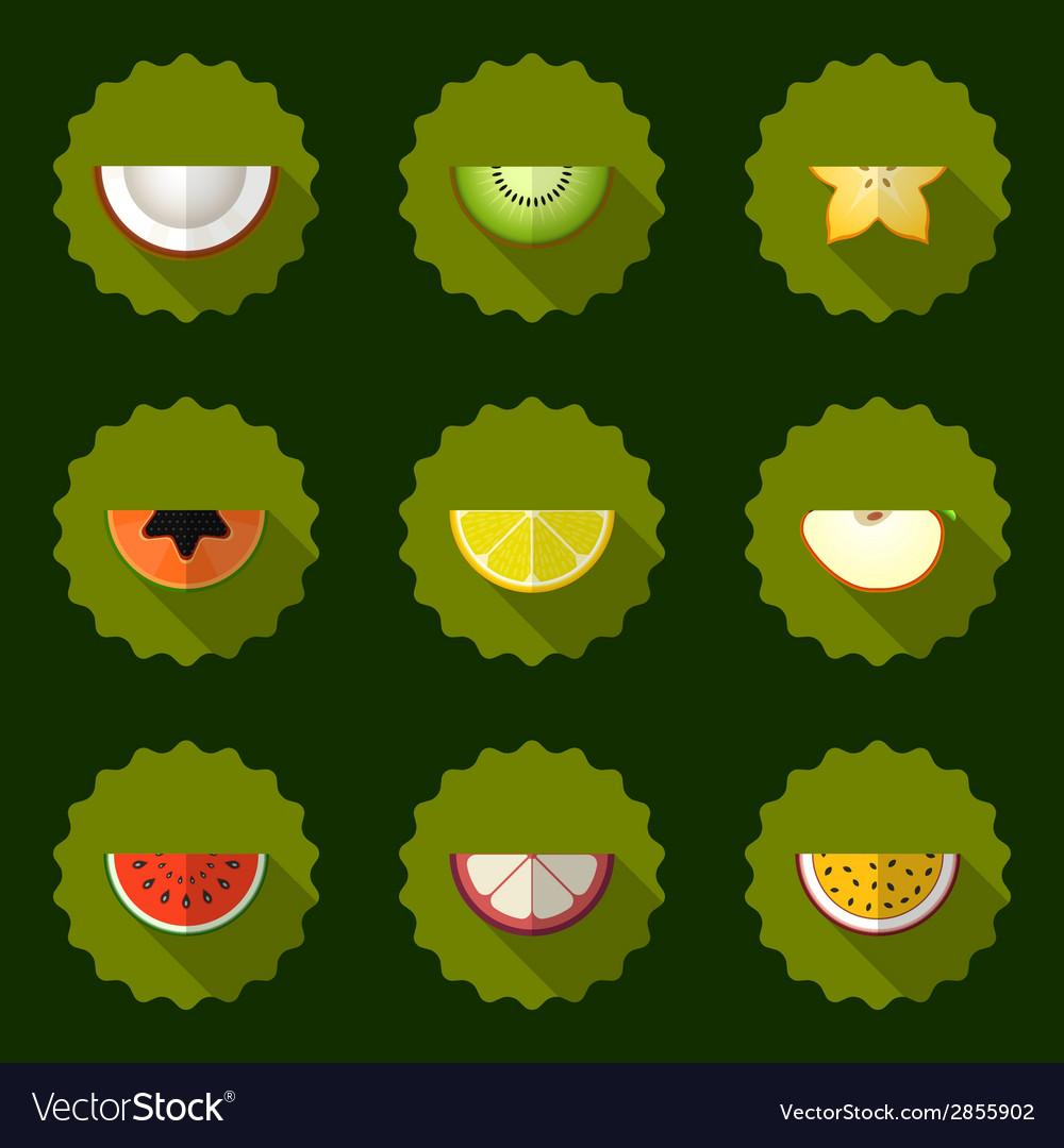 Fruit set background include apple coconut papaja vector | Price: 1 Credit (USD $1)