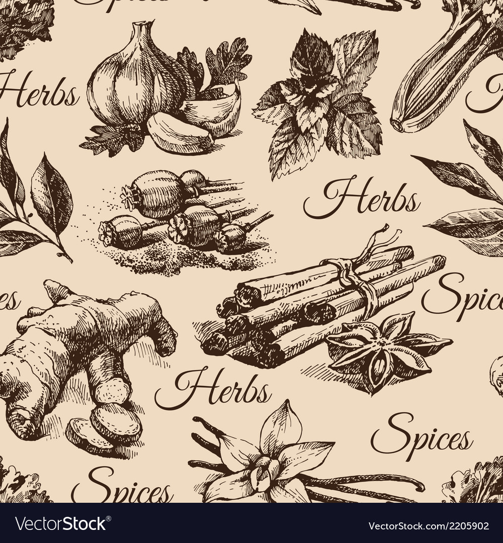 Seamless pattern of kitchen herbs and spices vector | Price: 1 Credit (USD $1)