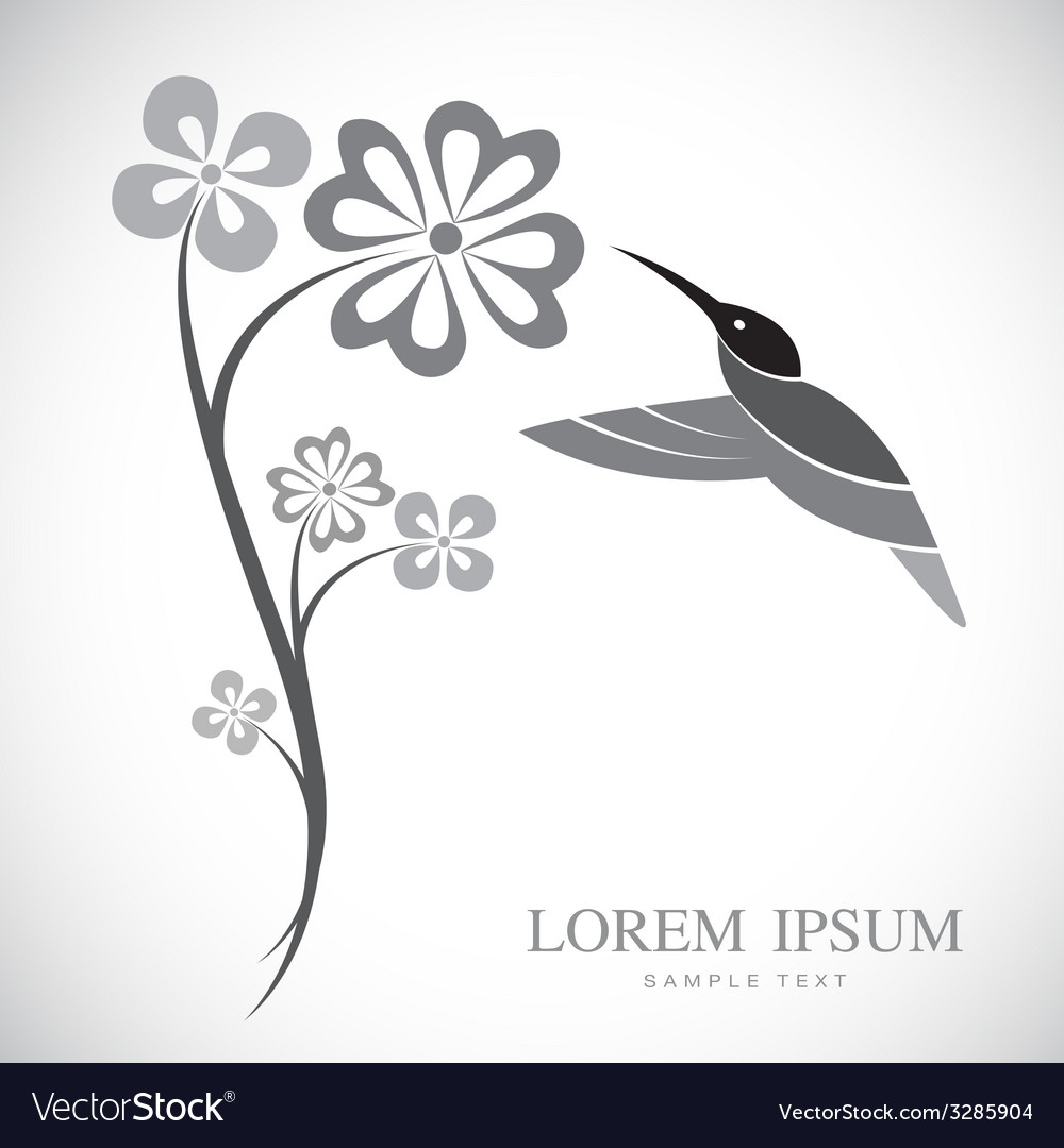 Flowers and hummingbirds vector   Price: 1 Credit (USD $1)