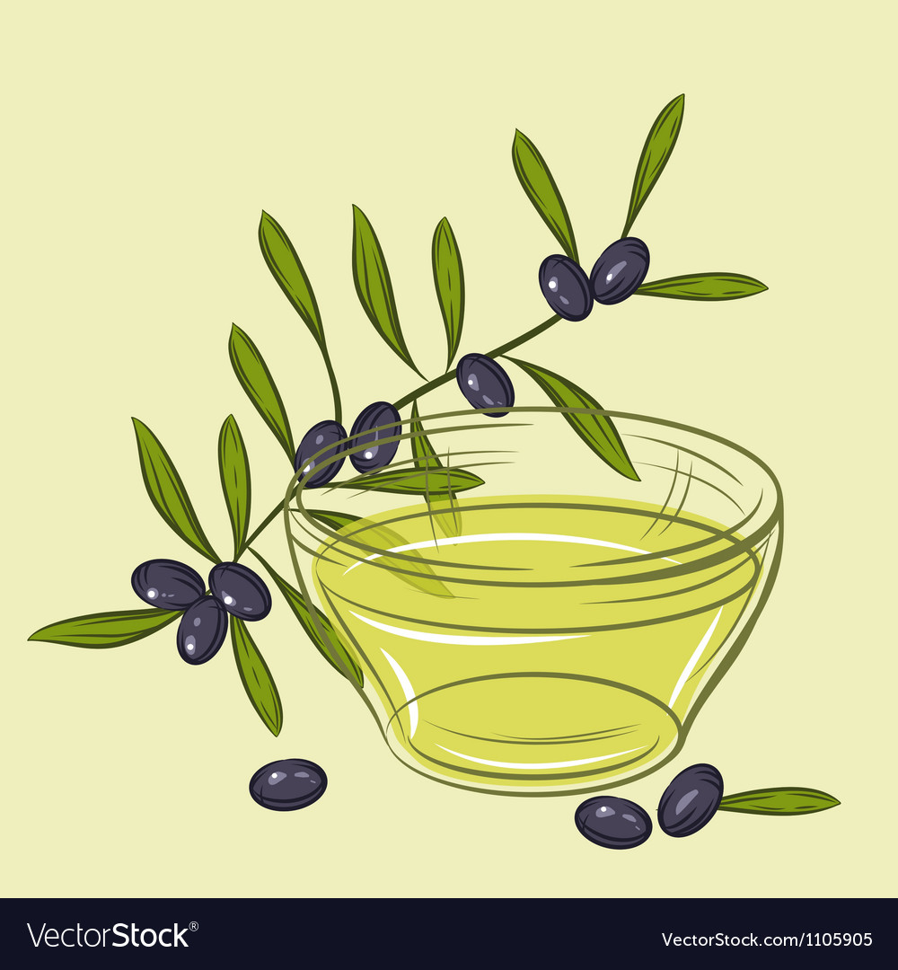 With black olives and cup of oil vector | Price: 1 Credit (USD $1)