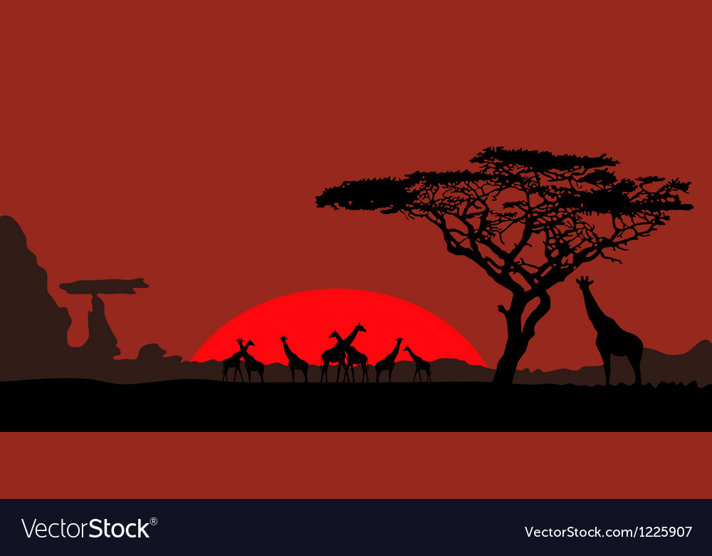 African landscape with giraffes vector | Price: 1 Credit (USD $1)