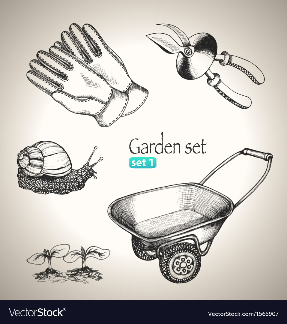 Garden set vector | Price: 1 Credit (USD $1)