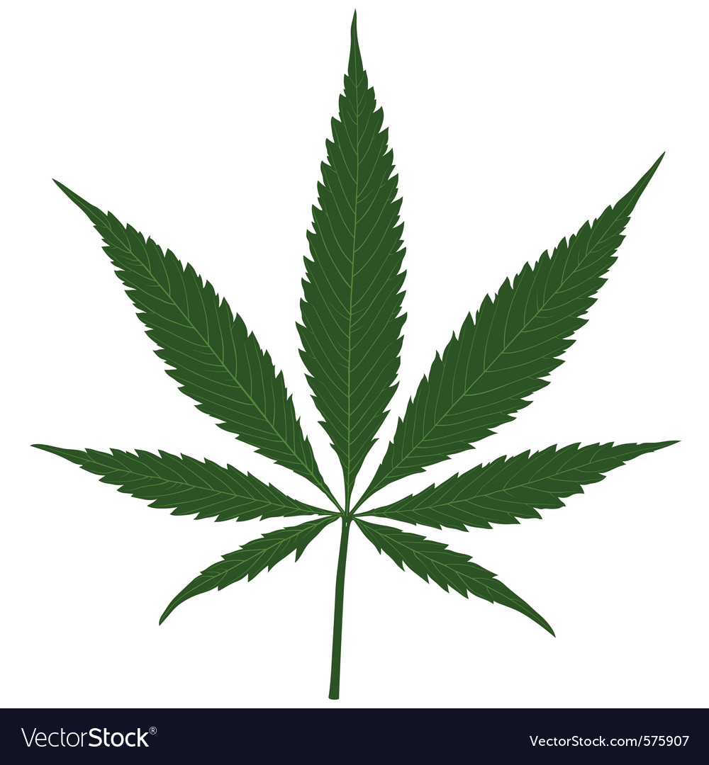 Hemp leaf vector | Price: 1 Credit (USD $1)