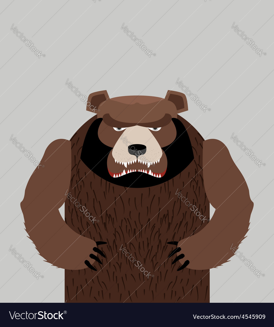 Angry bear standing vector | Price: 1 Credit (USD $1)