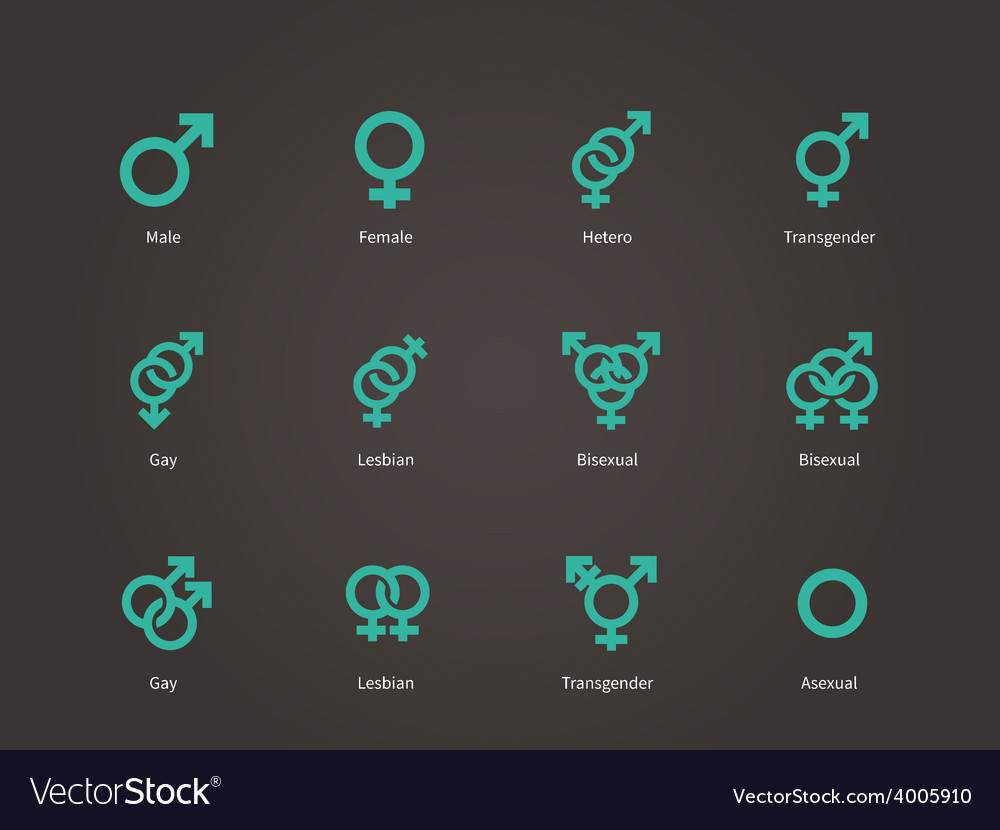 Male and female sexual orientation icons vector | Price: 1 Credit (USD $1)