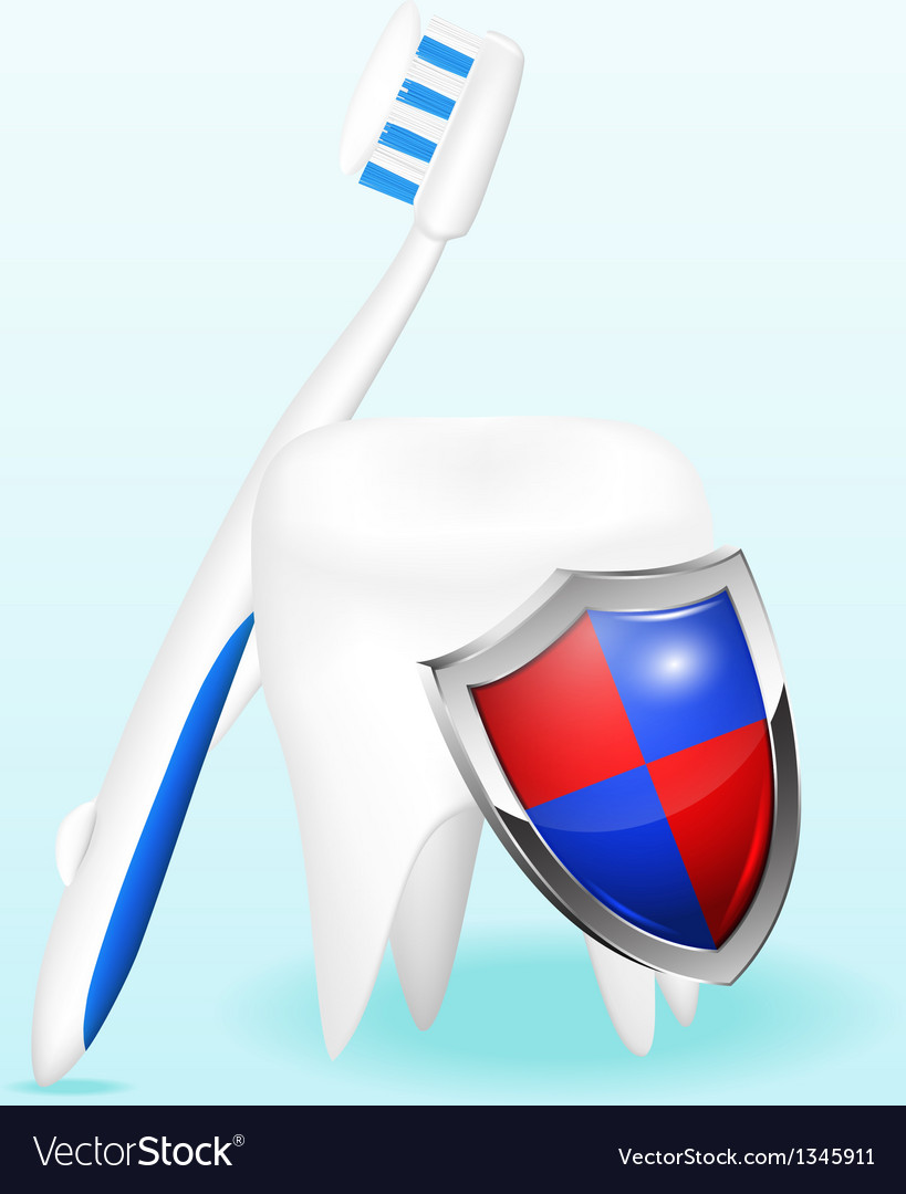 Tooth with a shield and a toothbrush vector | Price: 1 Credit (USD $1)