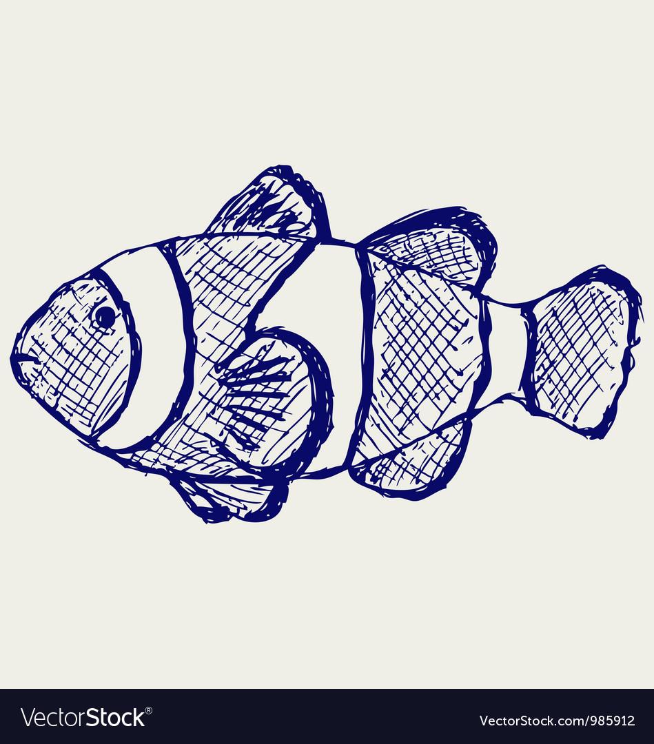 Tropical reef fish vector | Price: 1 Credit (USD $1)