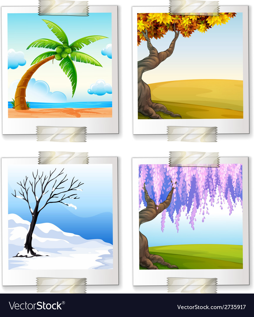 Different images of the four seaons vector | Price: 1 Credit (USD $1)