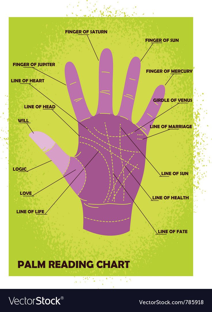Palm reading chart vector | Price: 1 Credit (USD $1)