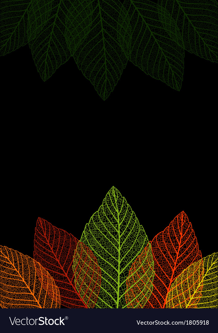 Skeleton leaf background vector | Price: 1 Credit (USD $1)
