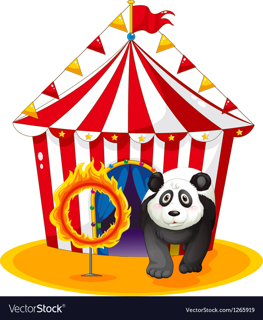 A panda beside the fireball vector | Price: 1 Credit (USD $1)