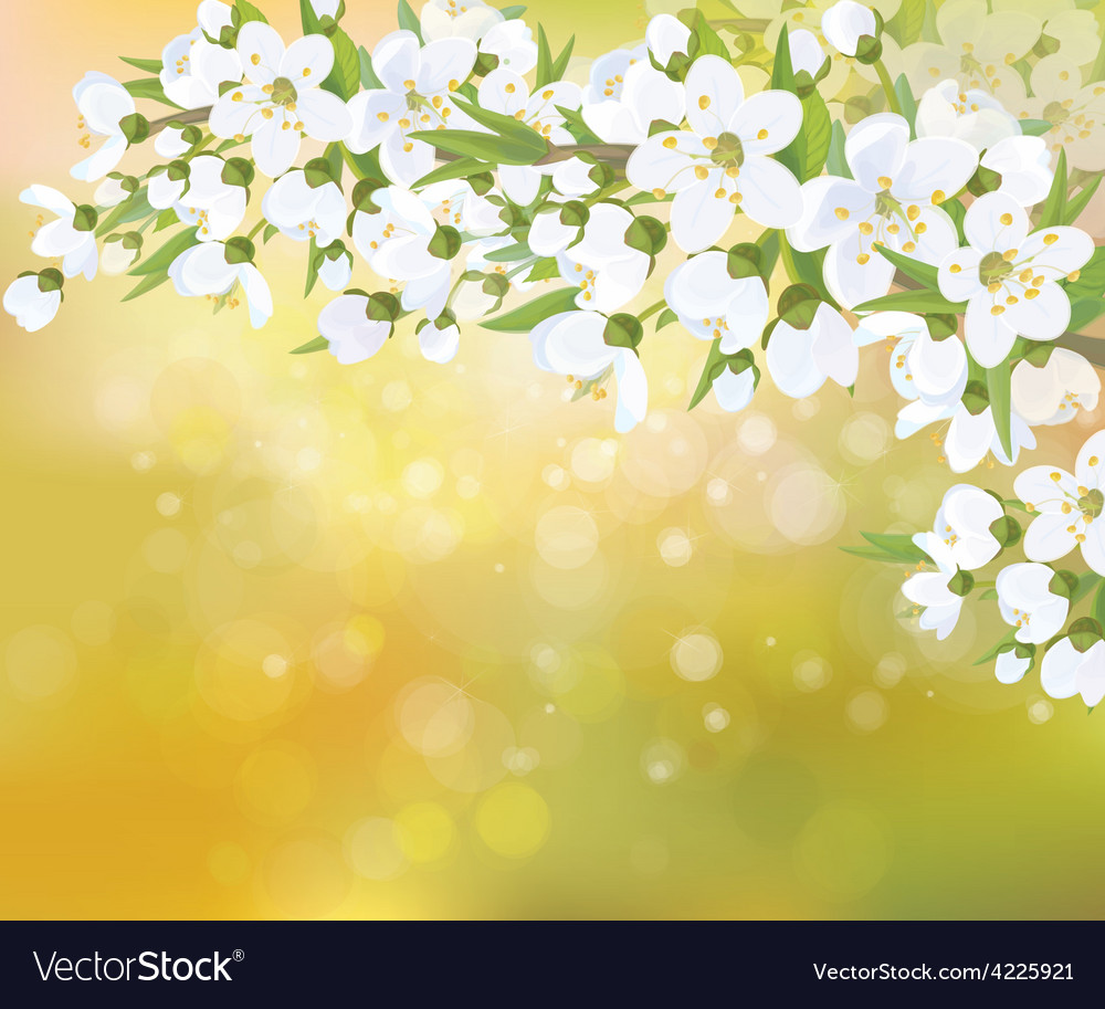 Spring blossom trees vector | Price: 1 Credit (USD $1)