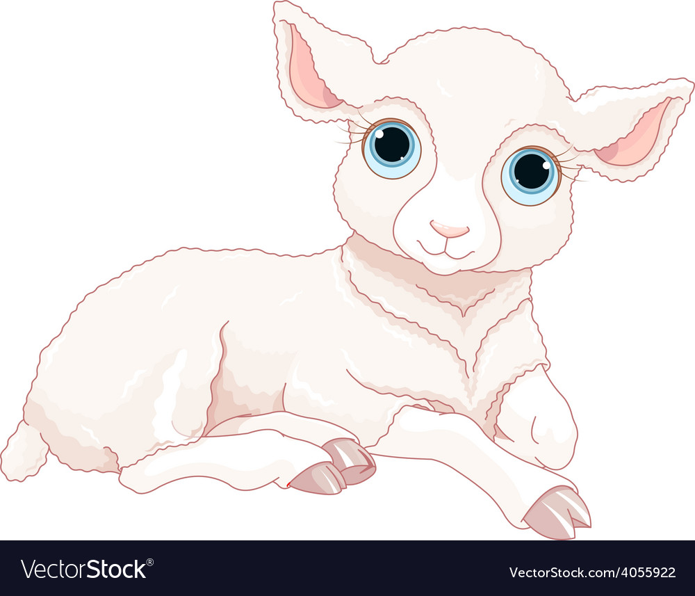 Baby sheep vector | Price: 3 Credit (USD $3)