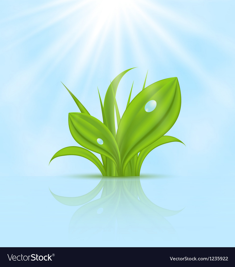 Spring wallpaper with green grass vector | Price: 1 Credit (USD $1)