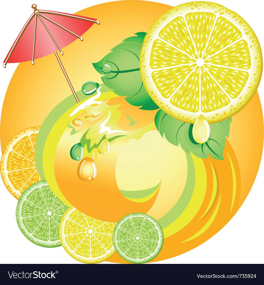 Citrus ecology vector | Price: 1 Credit (USD $1)