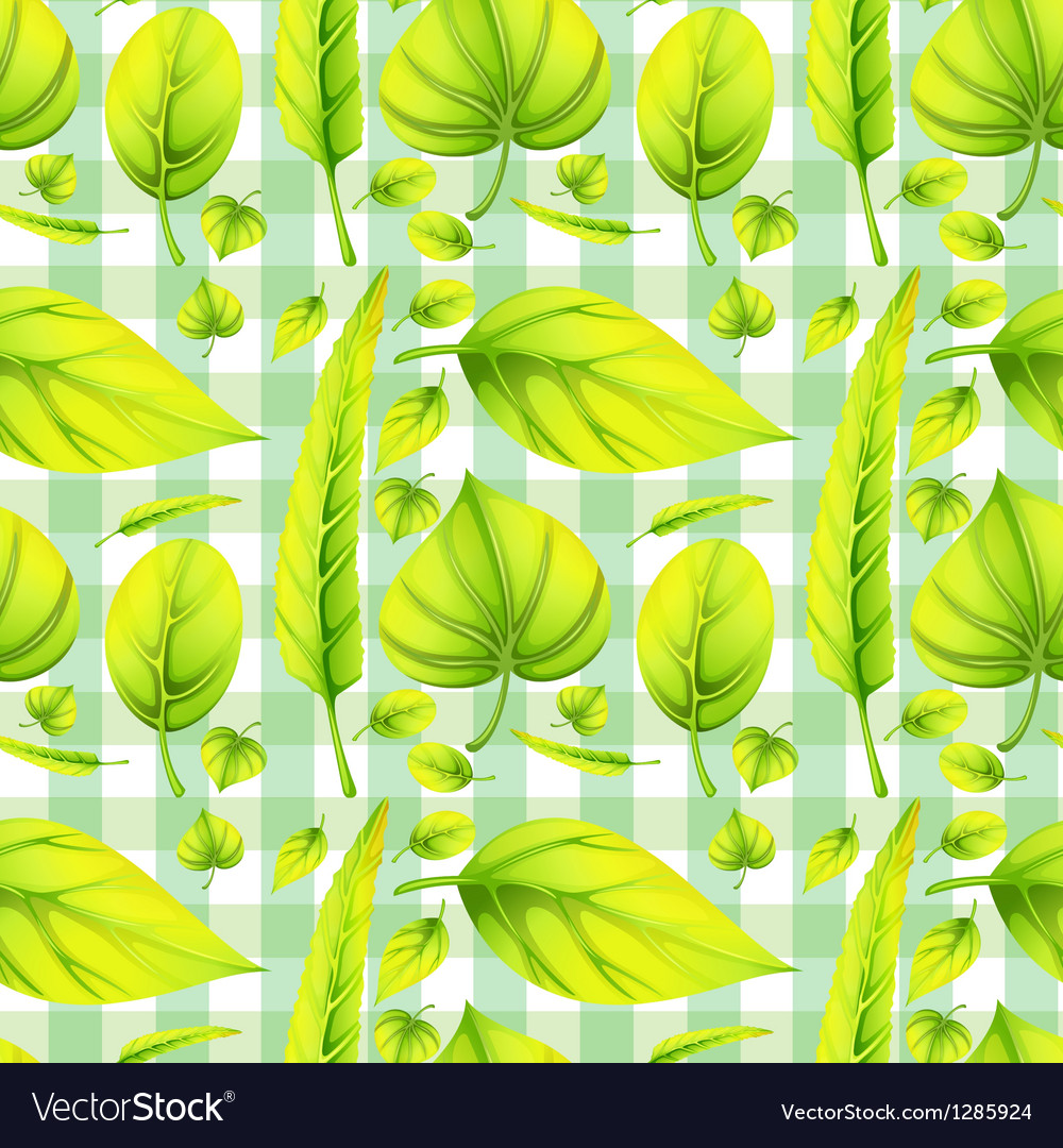 Different sizes and shapes of a leaf vector   Price: 1 Credit (USD $1)