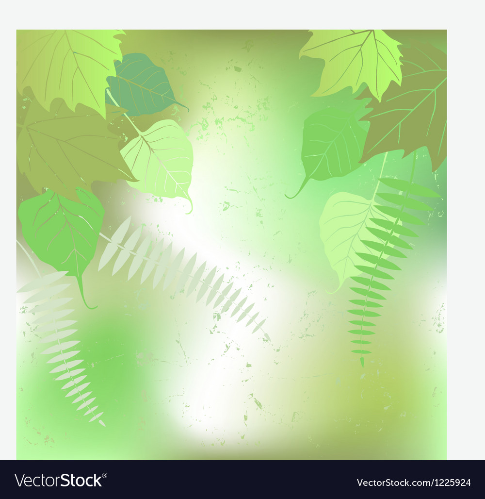 Floral background - plant leaves vector | Price: 1 Credit (USD $1)