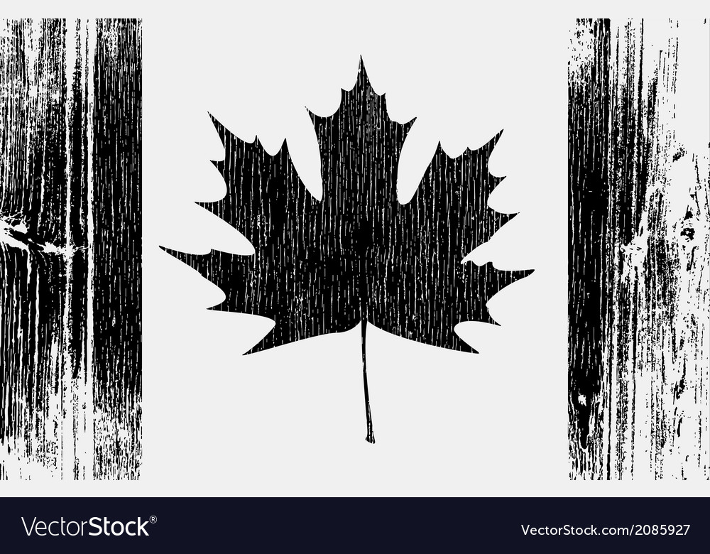 Canadian flag on a wood vector | Price: 1 Credit (USD $1)