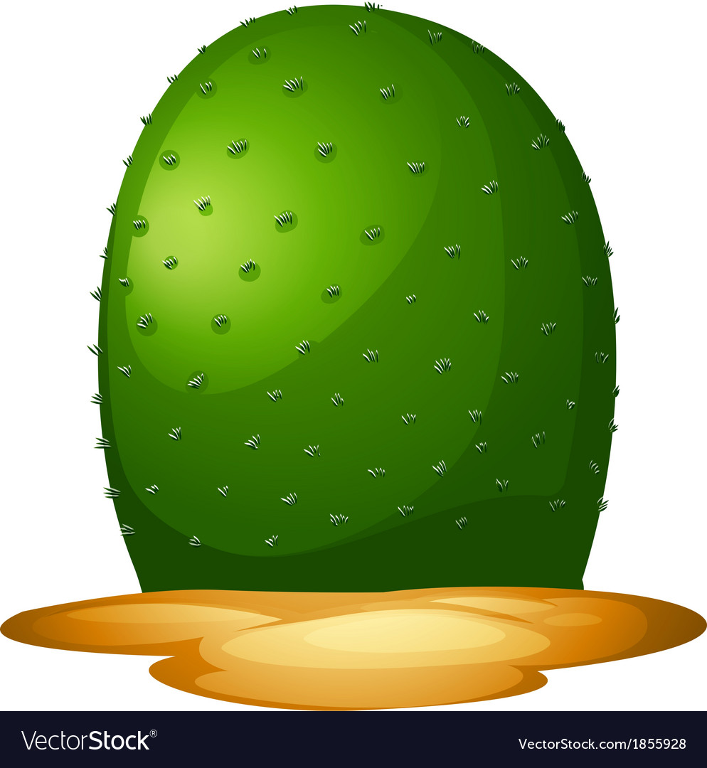 A plain cactus vector | Price: 1 Credit (USD $1)