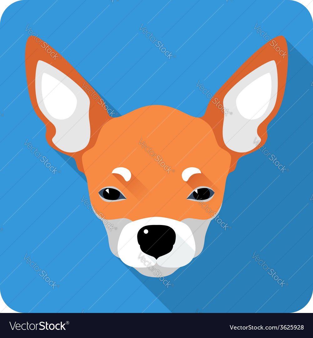 Dog chihuahua icon flat design vector | Price: 1 Credit (USD $1)