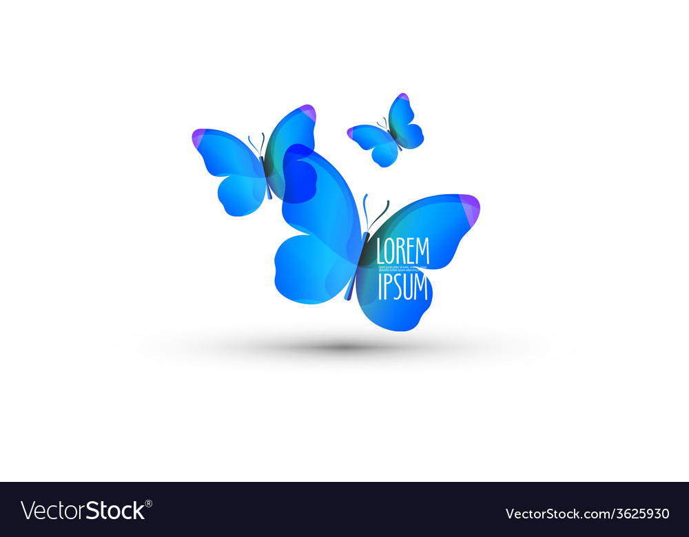 Butterfly logo design template insect or nature vector | Price: 1 Credit (USD $1)