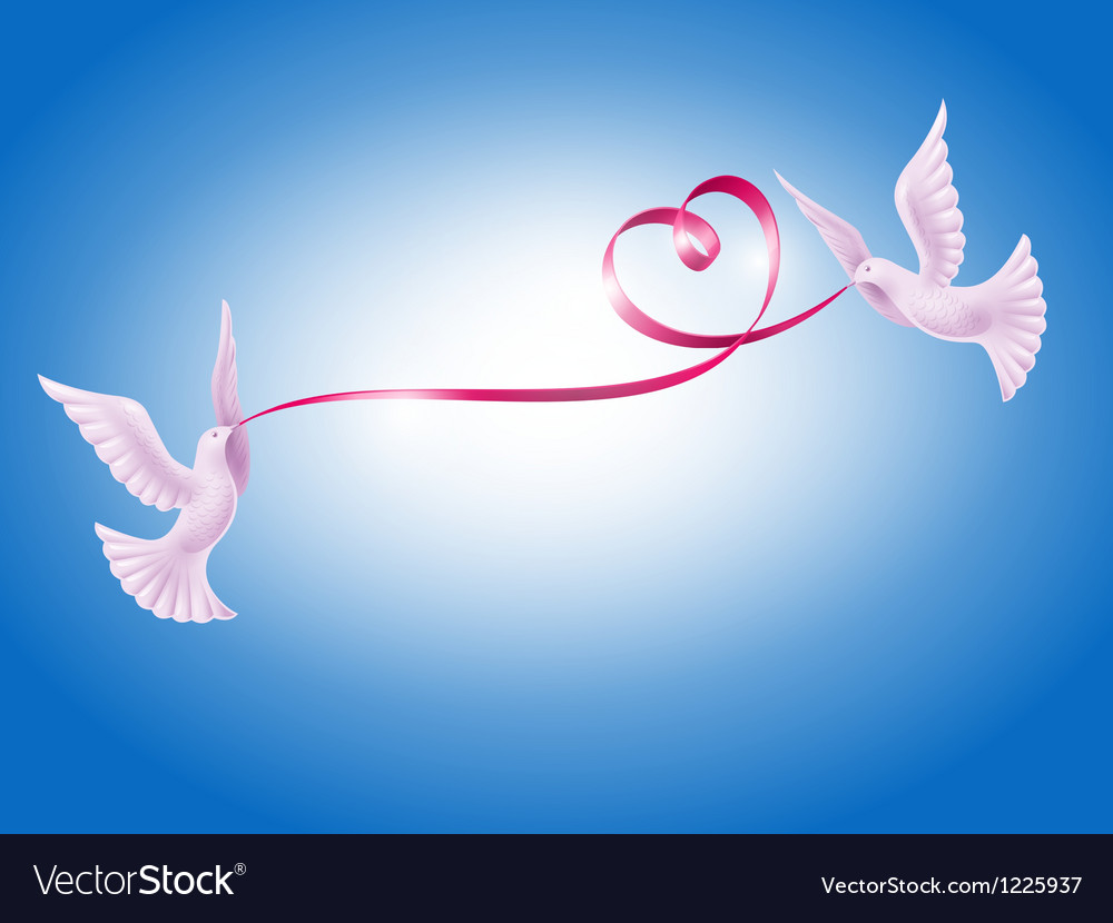 Pair of doves with heart vector | Price: 3 Credit (USD $3)