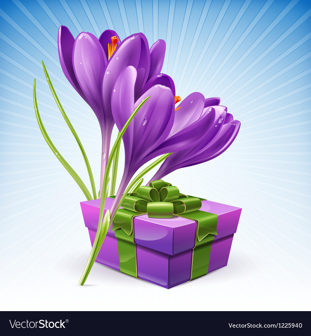 Gift and flowers vector | Price: 3 Credit (USD $3)