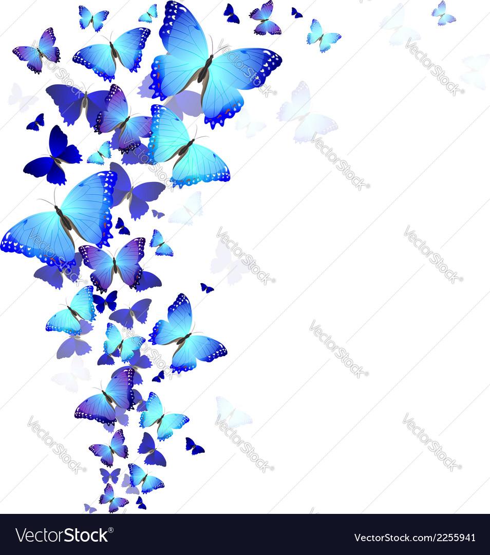 Background of butterflies vector | Price: 1 Credit (USD $1)