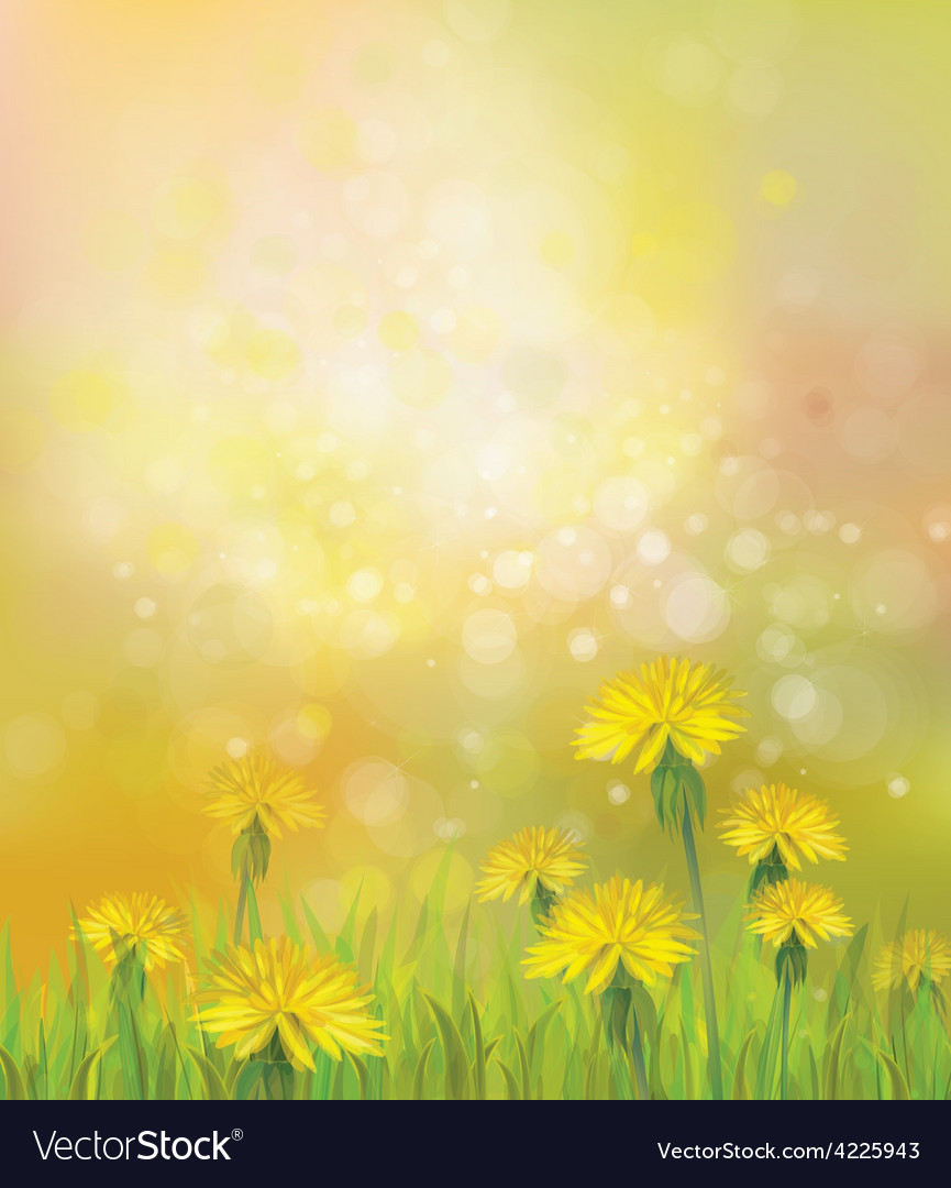 Dandelions spring background vector | Price: 1 Credit (USD $1)