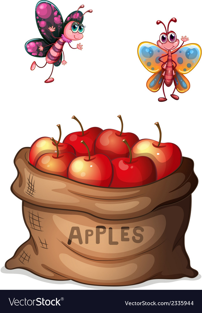 A sack of crunchy apples vector | Price: 1 Credit (USD $1)