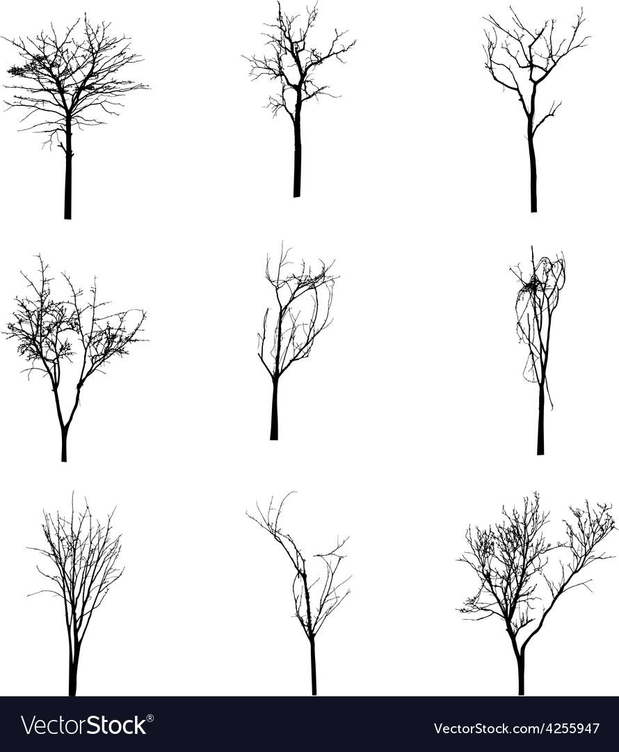 Black silhouette of a bare tree vector | Price: 1 Credit (USD $1)