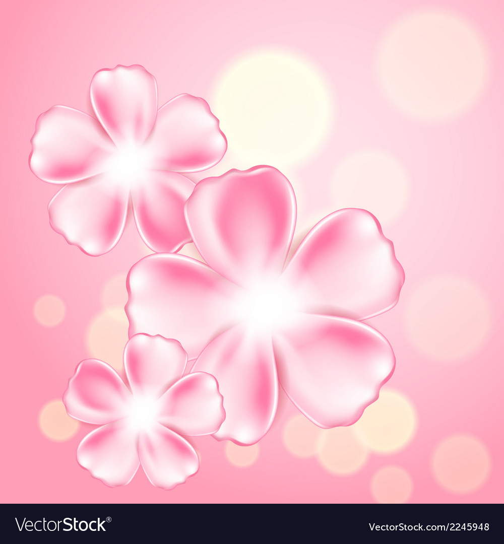 Beautiful pink flower background vector | Price: 1 Credit (USD $1)