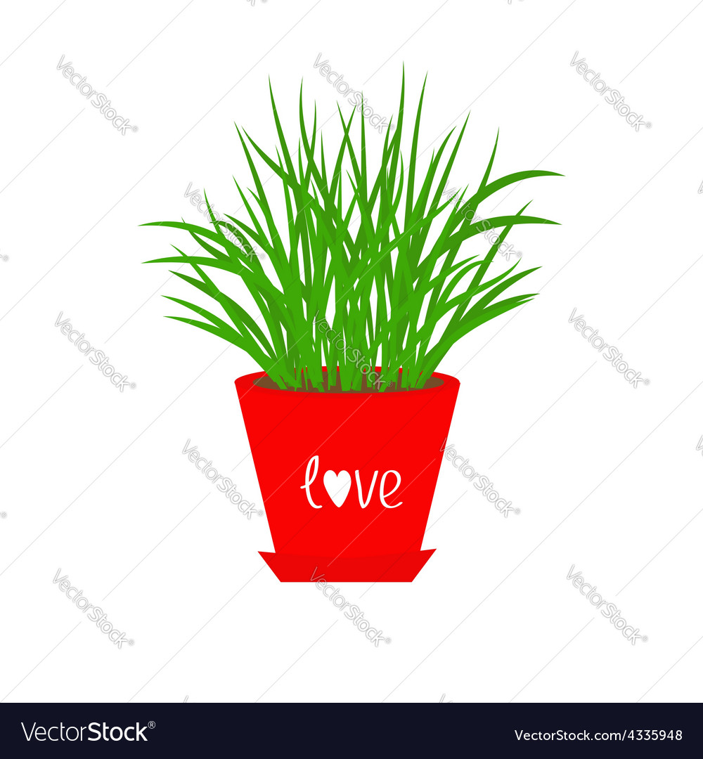Grass growing in red flower pot icon isolated love vector | Price: 1 Credit (USD $1)