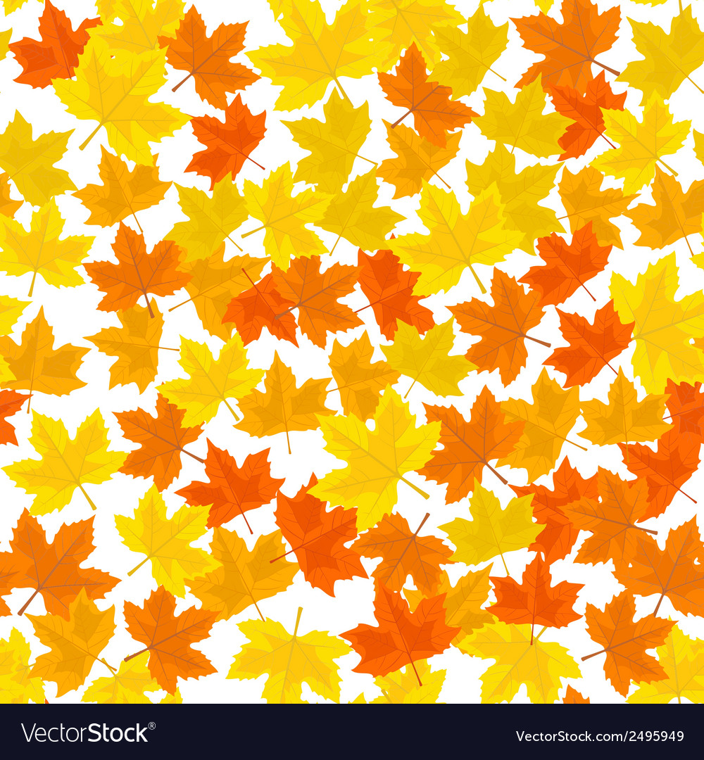 Seamless pattern with autumn maple leaves vector | Price: 1 Credit (USD $1)