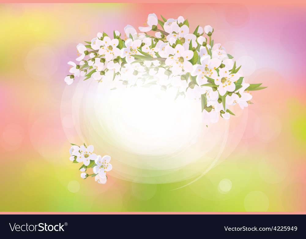 Spring frame flowers vector | Price: 1 Credit (USD $1)