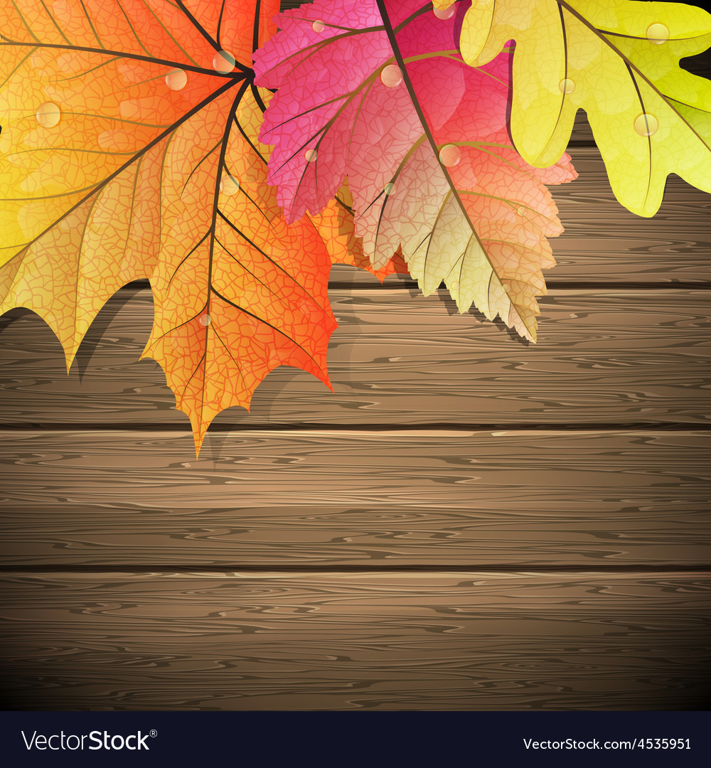 Autumn leaves over wooden background eps 10 vector | Price: 1 Credit (USD $1)