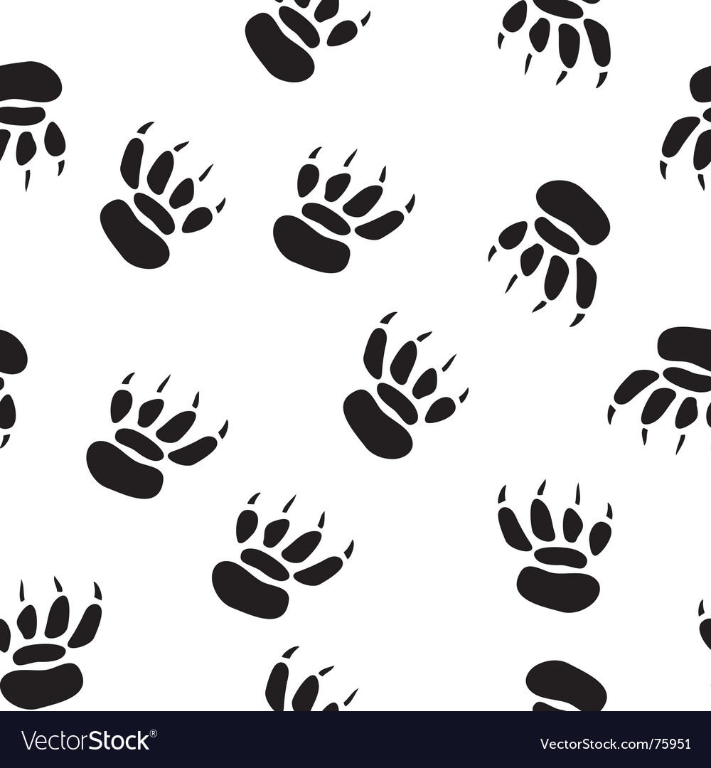 Paw print background vector | Price: 1 Credit (USD $1)