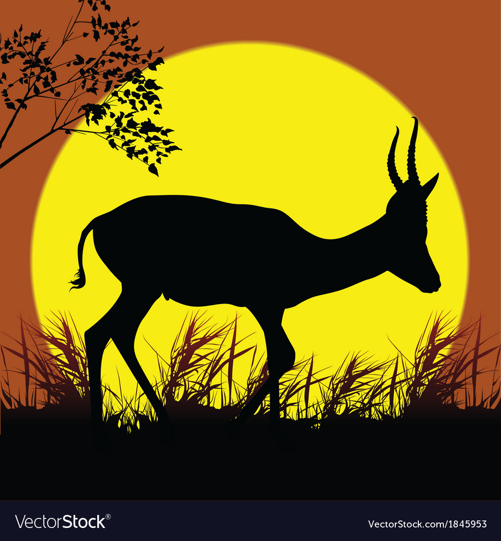 Antelope silhouette vector | Price: 1 Credit (USD $1)