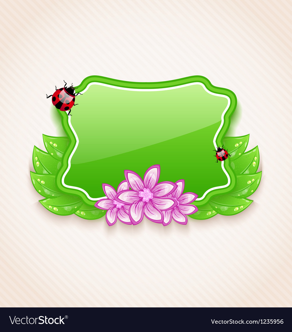 Cute spring card with flower leaves lady-beetle vector | Price: 1 Credit (USD $1)