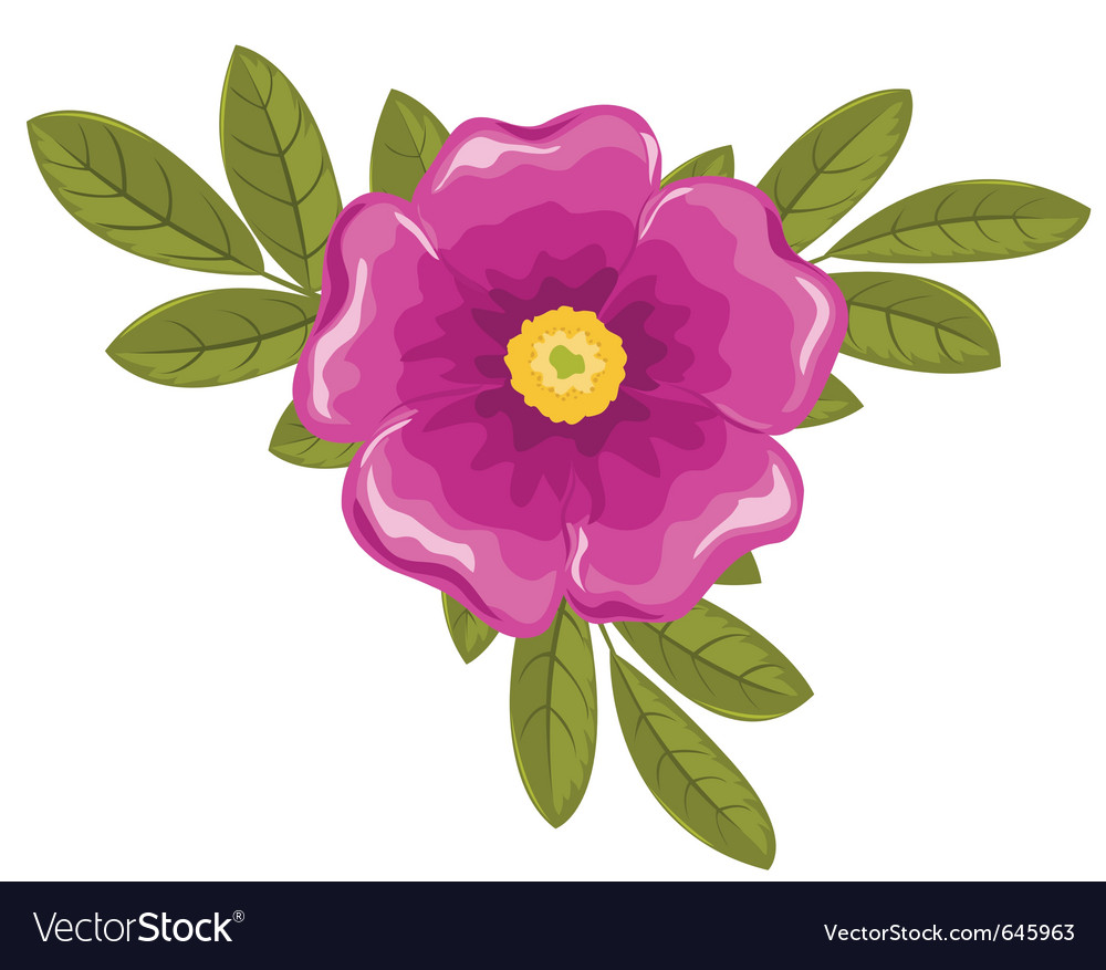 Dogrose flower and leaves vector | Price: 1 Credit (USD $1)