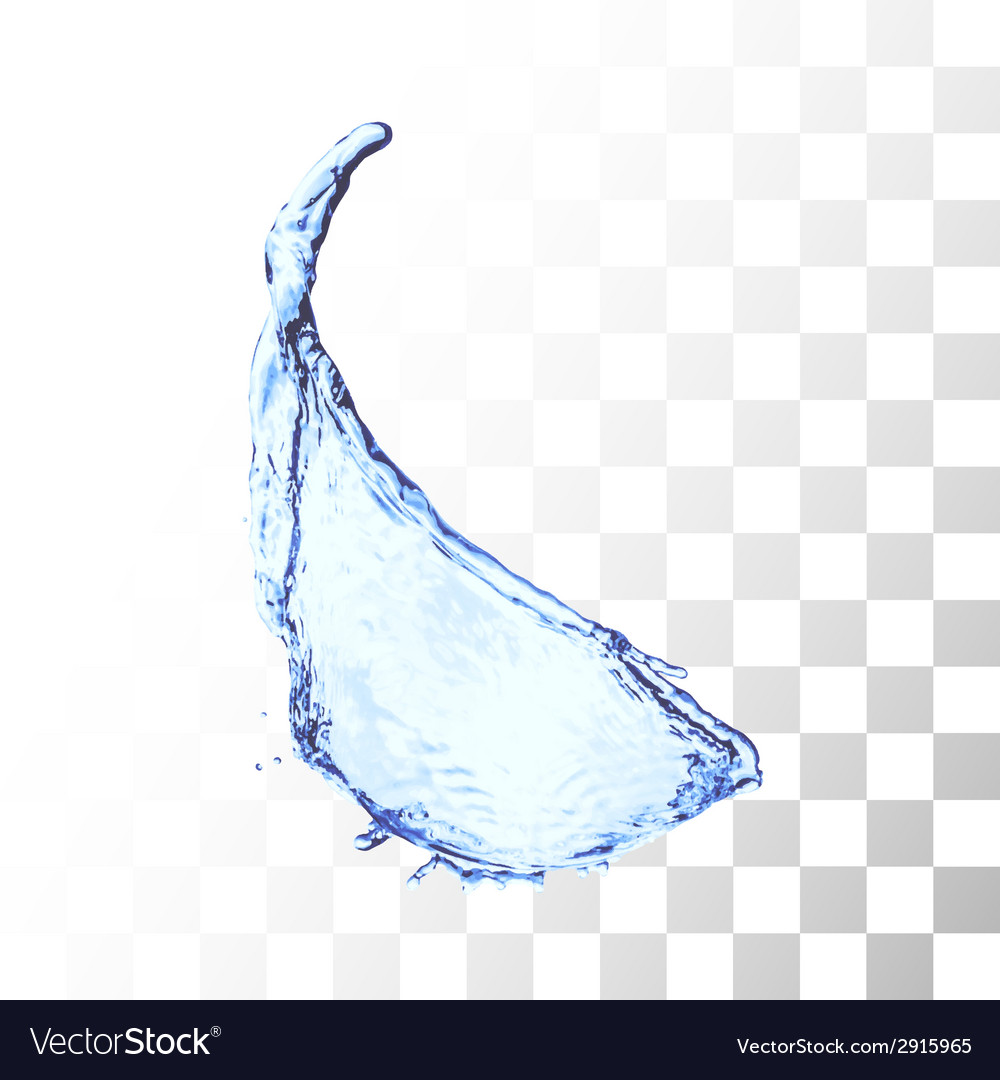 Blue water splash isolated on white vector   Price: 1 Credit (USD $1)