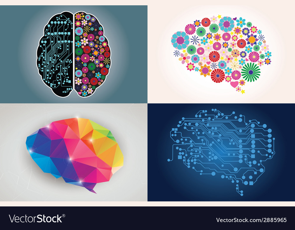 Collections of four different human brains left vector | Price: 1 Credit (USD $1)