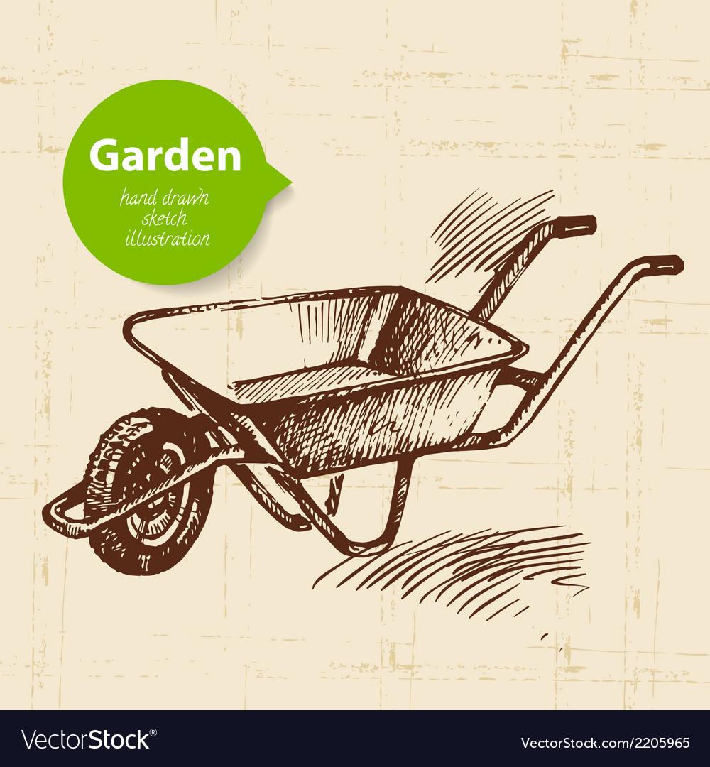 Vintage sketch garden background vector | Price: 1 Credit (USD $1)