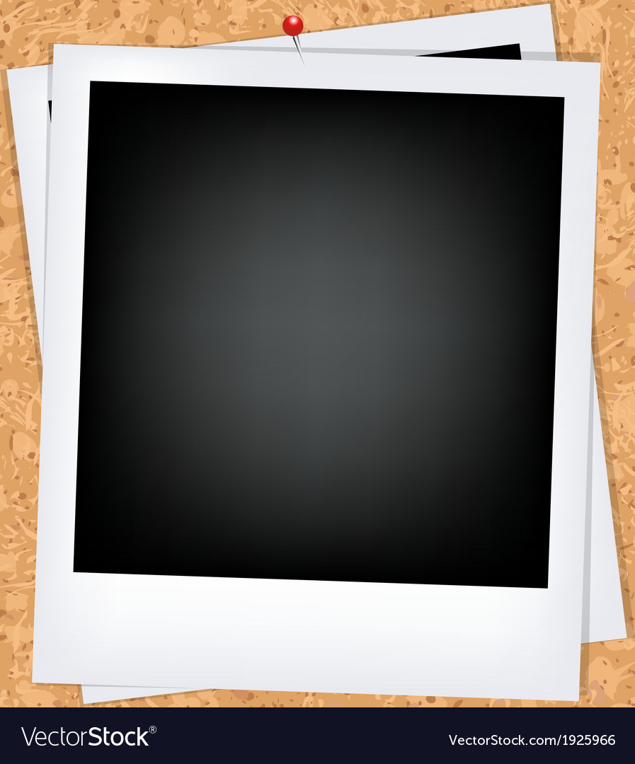 Cork board with photo vector | Price: 1 Credit (USD $1)