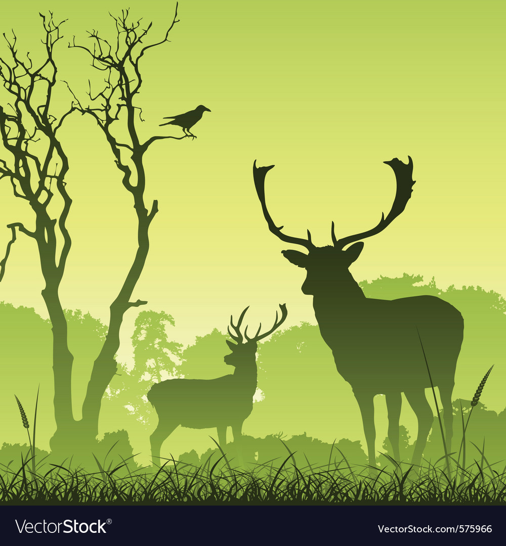 Stag deer vector | Price: 1 Credit (USD $1)