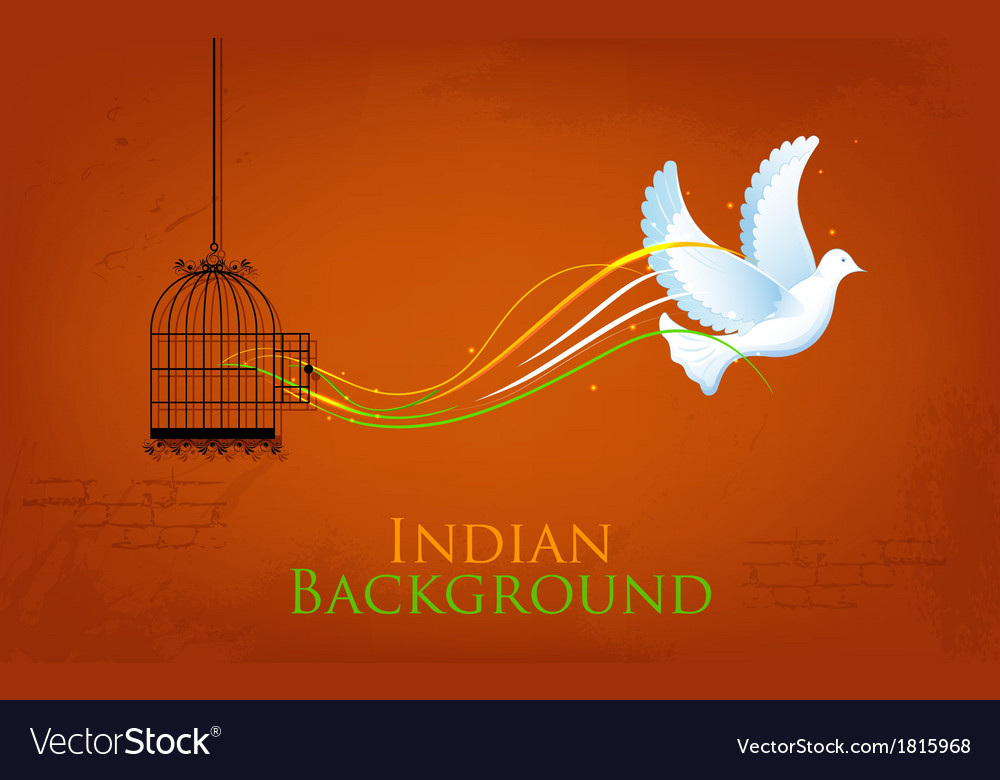 Dove enjoying freedom from cage vector | Price: 1 Credit (USD $1)