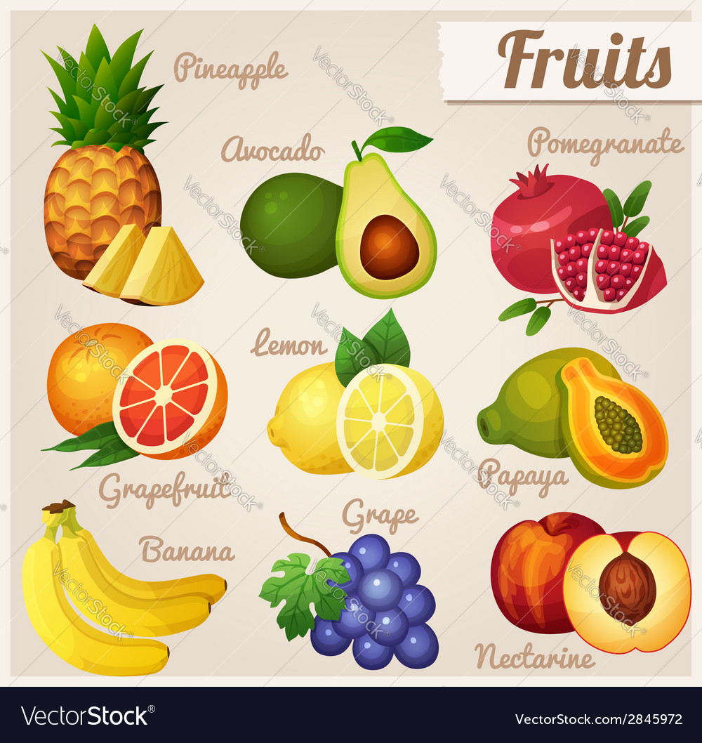 Set of food icons fruits vector   Price: 3 Credit (USD $3)