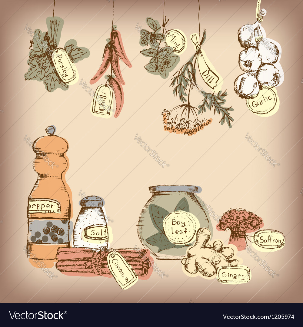 Set of spices and herbs vector | Price: 1 Credit (USD $1)